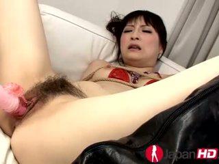 nepieredzējis, japānas, eksotisks