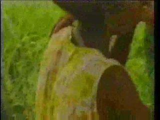 збір винограду, африканський, чорне дерево