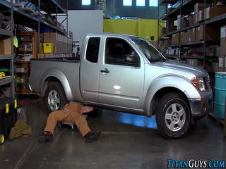 Buff mechanic bears ปอนด์