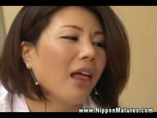 japoński, puma, egzotyczny