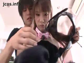 Playful japonská kitty