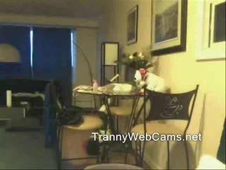 Shemale gets webcam cumshot