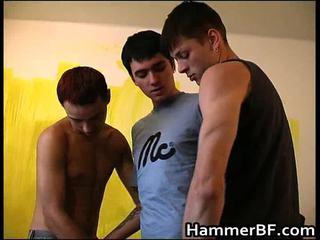 geju blowjob, geji porn sex hard, porno geju grūti dzimums