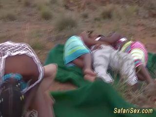grupu sekss, afrikānis, liels gailis