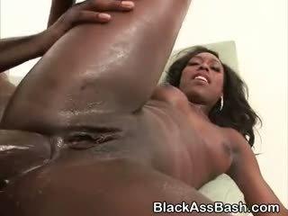 melns un ebony, trijatā, liels gaiļus