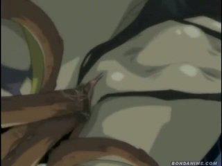 hentai, animasjon, tegneserier