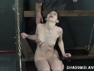 shemale, bdsm, shemales with guys
