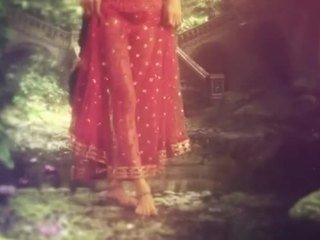 Kamasutra 3d Sherlyn Chopra