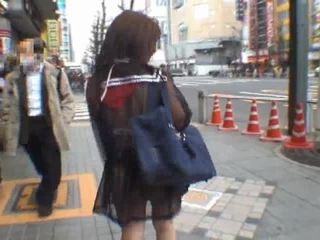 Mikan astonishing asiatic scolarita enjoys public