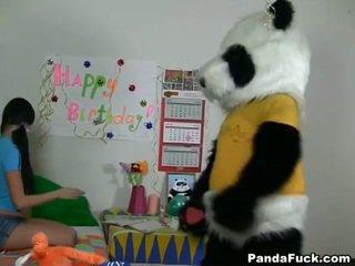 Panda gets شاب في سن المراهقة فتاة