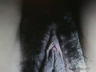 Mature Sexy Hairy Cunt Amateur, Free Hairy Mature Porn Video