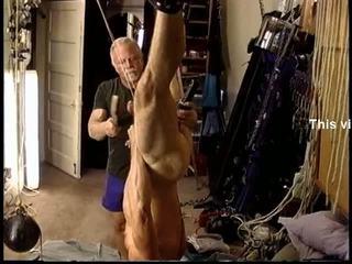 Jim roberts gets buah zakar bengayed dan siksaan alat kelamin pria