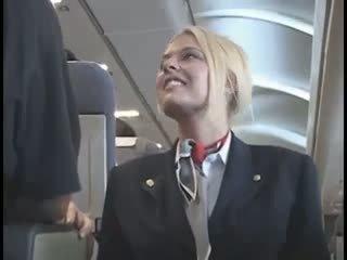 אמריקאית stewardes fantasy