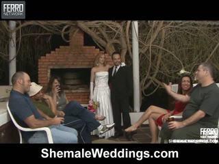 Alessandra matheus τραβεστί γάμος σεξ