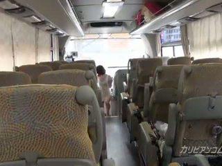 4x4 caribbean bus tour start van lul zuigen