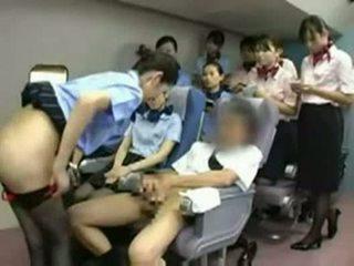 Aziatisch stewardess rammen de captain