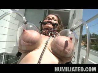 Mammīte pazemošana: krūtainas mammīte humiliated un tortured