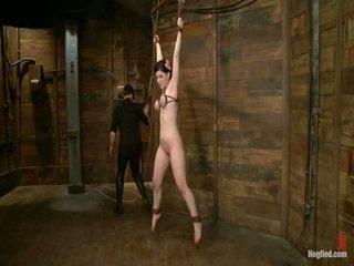 u voorlegging gepost, meest bondage sex vid, kwaliteit discipline scène