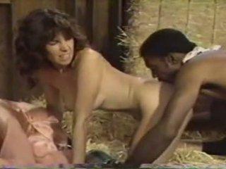 Vintage interracial peepshow loops 5