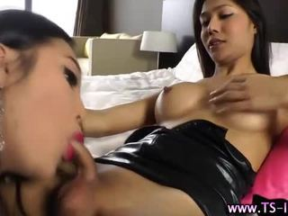 shemale, any blowjob, fresh ladyboy