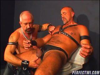 명랑한 완전한, 온라인으로 게이, 이상 동성애의 좋은