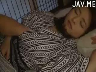 японський, немовля, любитель
