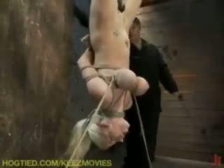torture gratuit, vous bizarre, gratuit attaché idéal