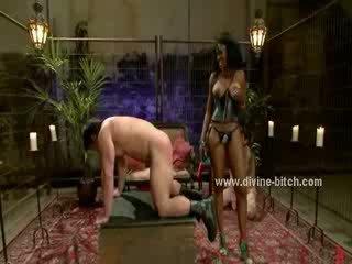 porno neuken, online pervers, bizzare video-