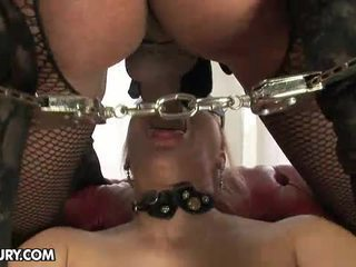 tranny, nice hd porn hottest, fresh shemale sex great