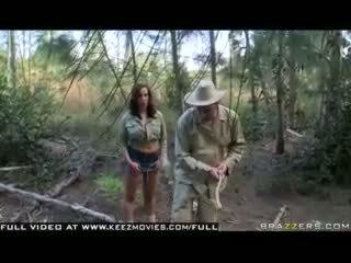 Kelly divine - tấn công của các jugg đói bees!