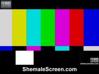 Heiß shemale bildschirm film starring sharon, monique, agata