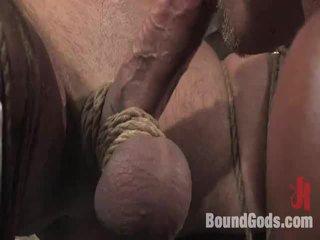 meer homo- tube, ideaal pervers porno, u orgasme