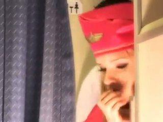likformig, air hostesses