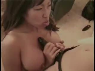 pijpen seks, nominale seksspeeltjes porno, kijken lesbiennes tube