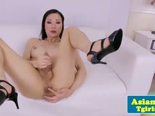 shemale, glamour, solo, tranny