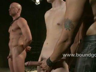 hq gay, muscle thumbnail, hunk