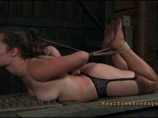 Dominasi porno