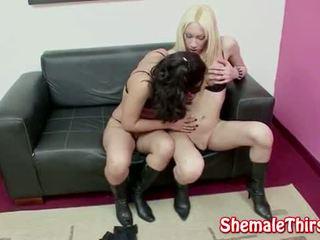 Hot Shemale Female Sex
