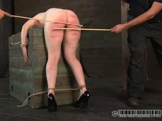 new sex, nice humiliation fuck, fun submission
