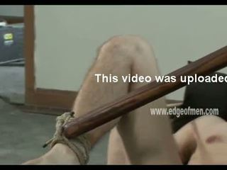 vol homo- neuken, sadomaso vid, heetste extreem video-