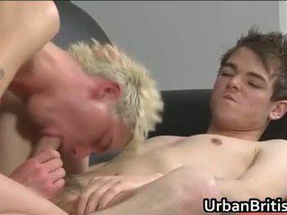 plezier neuken film, alle anus, gaysex video-