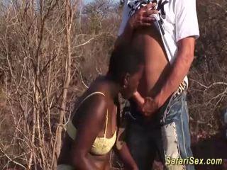 非洲的 深喉 safari 狂歡 <span class=duration>- 12 min</span>