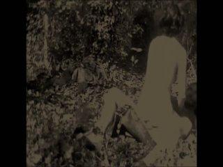 Starodávne les von