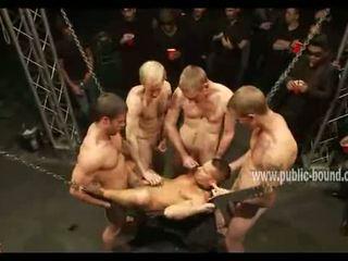 meer kerel porno, kwaliteit groepsseks actie, homo-