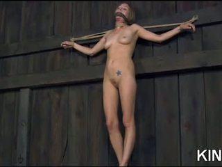 nominale seks, voorlegging video-, bdsm film
