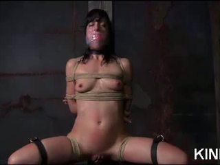 seks tube, beste voorlegging neuken, meer bdsm actie