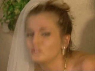 Brides dhe bitches