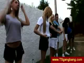 Sporty transsexuals start crazy gangbang