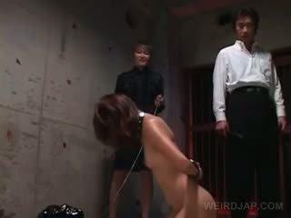 japonês, brinquedos, sexo grupal
