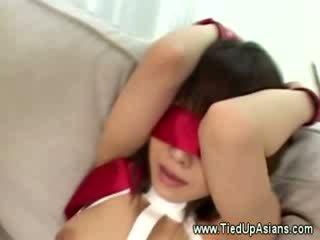 Cheap एशियन हुकर tied ऊपर और fingered